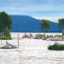 Flood resistant